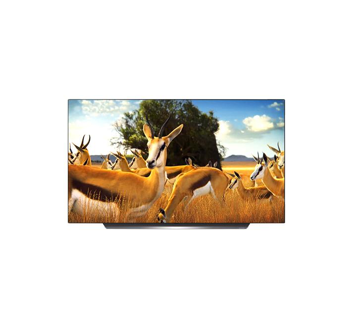 [S] LG 올레드 TV AI ThinQ 55인치 OLED55BXF / 월49,900원